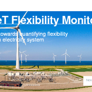 TenneT Flexibility Monitor