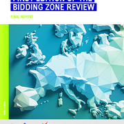 First edition of the bidding zone review