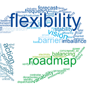 Flexibility roadmap